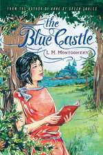 The Blue Castle:  The eBook Revolution and the Future of Reading