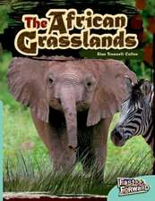 African Grasslands Fast Lane Turquoise Non-Fiction