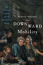 Downward Mobility – The Form of Capital and the Sentimental Novel