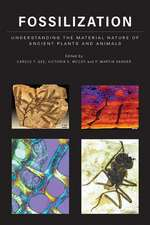 Fossilization – Understanding the Material Nature of Ancient Plants and Animals