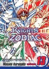 Knights of the Zodiac (Saint Seiya):  Volume 13