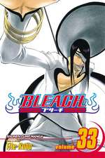 Bleach, Volume 33