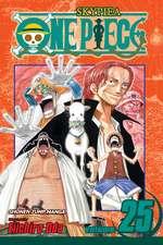 One Piece, Vol. 25