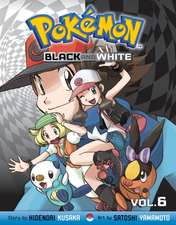 Pokémon Black and White, Vol. 6