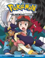 Pokémon Black and White, Vol. 12
