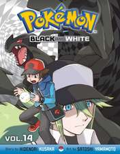 Pokémon Black and White, Vol. 14