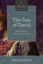 The Son of David:  Seeing Jesus in the Historical Books (a 10-Week Study)