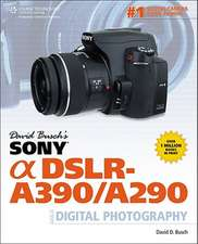 David Busch's Sony Alpha DSLR-A390/A290 Guide to Digital Photography:  Agile Software Project Management and Development