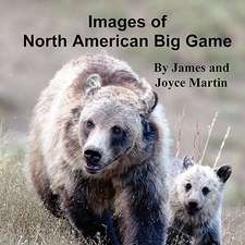Images of North American Big Game