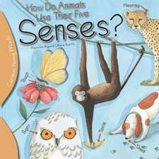 How Do Animals Use Their Five Senses?
