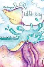 The Amazing Flight of Little Ray:  A Comic Mystery