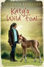 Katy's Exmoor Ponies: Katy's Wild Foal