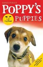POPPYS DOGS TRUST PUPPIES
