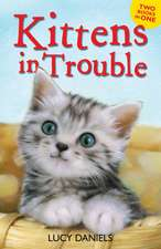 Kittens in Trouble (Kittens in the Kitchen & Kitten in the Cold)