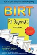 Birt for Beginners