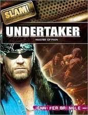 Undertaker:  Master of Pain