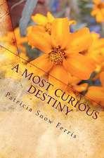 A Most Curious Destiny