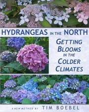 Hydrangeas in the North