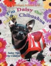 I'm Daisy the Safety Chihuahua