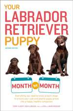 Your Labrador Retriever Puppy Month by Month, 2nd Edition:  Energy (Library Edition)