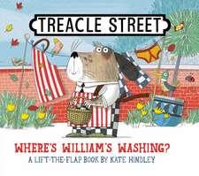 Where's William's Washing?