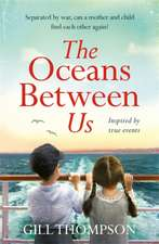 Oceans Between Us: Inspired by heartbreaking true events, the riveting debut novel