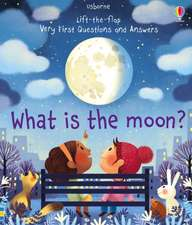 LTF VERY FIRST Q A WHAT IS THE MOON