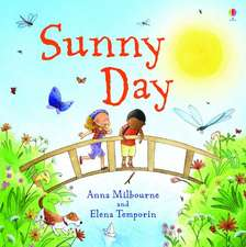 THE SUNNY DAY LITTLE BOARD BOOK