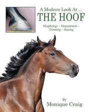 A Modern Look at ... the Hoof:  Morphology Measurement Trimming Shoeing
