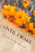 Until I Wake