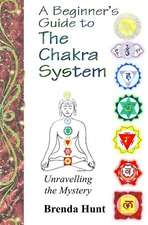 A Beginner's Guide to the Chakra System