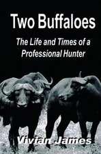 Two Buffaloes