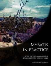 Mybatis in Practice