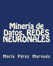 Mineria de Datos. Redes Neuronales