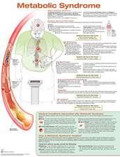 Metabolic Syndrome Anatomical Chart Laminated