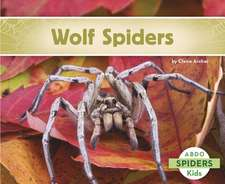 Wolf Spiders