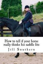How to Tell If Your Horse Really Thinks His Saddle Fits
