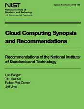 Cloud Computing Synopsis and Recommendations