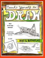 Teach Yourself to Draw - Bugs and Butterflies