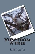 View from a Tree