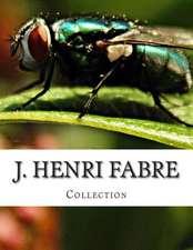 J. Henri Fabre, Collection