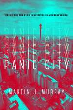 Panic City: The Urban Fear Industry in Johannesburg