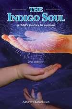 The Indigo Soul