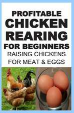 Profitable Chicken Rearing for Beginners