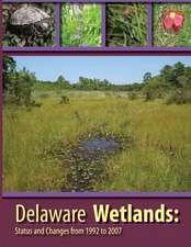 Deleware Wetlands
