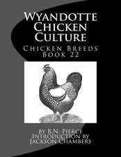 Wyandotte Chicken Culture