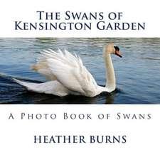 The Swans of Kensington Garden