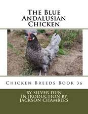 The Blue Andalusian Chicken