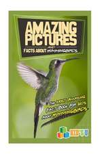 Amazing Pictures and Facts about Hummingbirds