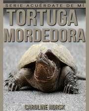 Tortuga Mordedora